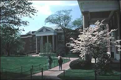 Trinity college essay prompts